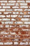mur Obraz Stock