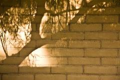 Mur allumé d'Adobe Photographie stock libre de droits