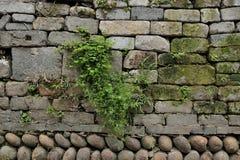 Mur antique chinois Photo stock