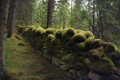 Mur antique dans la forêt, couverte de la mousse du temps et de l'humidité en Norvège photographie stock