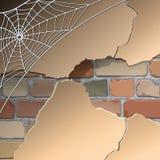 Mur avec des toiles d'araignée Images stock
