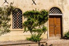 Mur avec la porte, fenêtre, buisson Photo libre de droits
