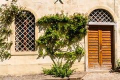 Mur avec la porte, fenêtre, buisson Photographie stock libre de droits