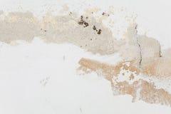 Mur avec le plâtre de émiettage Image stock