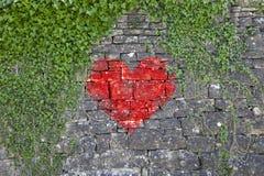 Mur avec le signe de coeur et l'usine de lierre Photographie stock libre de droits