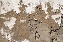 Mur blanc âgé par épluchage photos libres de droits