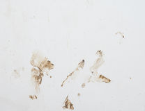 Mur blanc avec la boue splasing photo stock