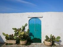 Mur blanc, porte peinte et cactusses Photographie stock libre de droits