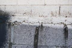 Mur blanc souillé Photo libre de droits