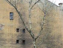 Mur corrodé Images libres de droits