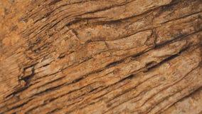 Mur criqué de brun de bois dur Photographie stock