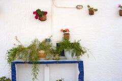 Mur décoré des fleurs dans des pots Images stock