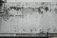 Mur d'humidité Photos libres de droits