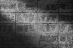 Mur de bloc de brique et rayons de soleil noirs et blancs de fond-lumière Image libre de droits