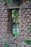 Mur de boue Image stock