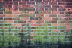 Mur de briques avec la texture de fond de peinture d'épluchage Image stock