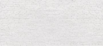 Mur de briques blanchi, fond clair de brique pour la conception W photographie stock libre de droits