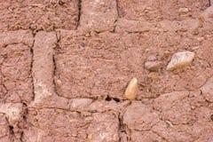 Mur de briques d'Adobe Image libre de droits
