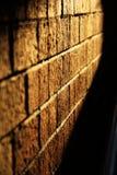 Mur de briques de coucher du soleil d'après-midi Image libre de droits