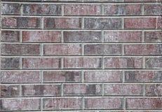 Mur de briques de couleur de Plum Purple Photographie stock