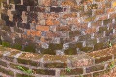Mur de briques et mousse de courbe Photos libres de droits