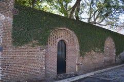 Mur de briques et porte historiques avec le lierre à Charleston, Sc Photographie stock libre de droits