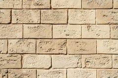 Mur de briques fait de mollusques et crustacés images stock