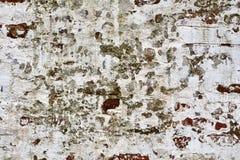Mur de briques grunge de la vieille maison Photographie stock libre de droits