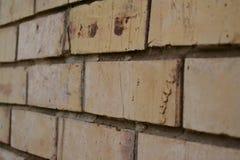 Mur de briques légèrement superficiel par les agents Photo libre de droits