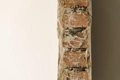 Mur de briques plâtré d'un côté Photographie stock