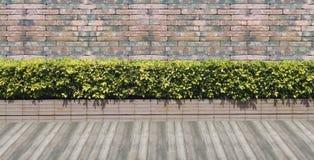 Mur de briques rouge sans joint Images stock