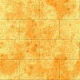 Mur de briques sans joint de texture Photographie stock libre de droits