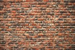 Mur de briques superficiel par les agents Photographie stock libre de droits