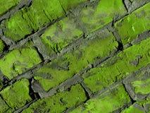Mur de briques vert Images libres de droits