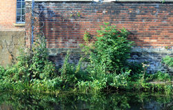 Mur 01 de canal Photo stock