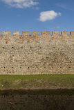Mur de château Images stock