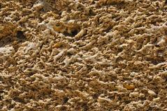 Mur de groupe à Cadix Images libres de droits