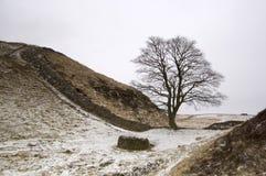 Mur de Hadrians Photographie stock libre de droits