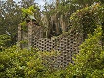Mur de jardin Photo libre de droits