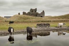 Mur de Jelous de maison de belvédère en Irlande image libre de droits