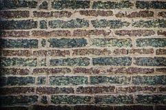 Mur de latérite Photographie stock libre de droits