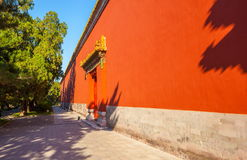 Mur de palais Photographie stock libre de droits