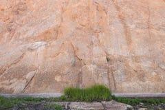 Mur de roche de correction d'herbe Image stock