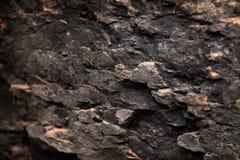 Mur de roche de surface approximative Images stock