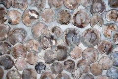 Mur de rondin Image libre de droits