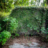 Mur de ruine Photos stock