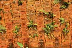Mur de tuile Photographie stock libre de droits