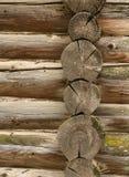Mur des logarithmes naturels Photographie stock libre de droits