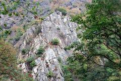 Mur des roches en vallée de rivière présagée Photos stock