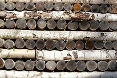 Mur des rondins de bouleau Photos stock